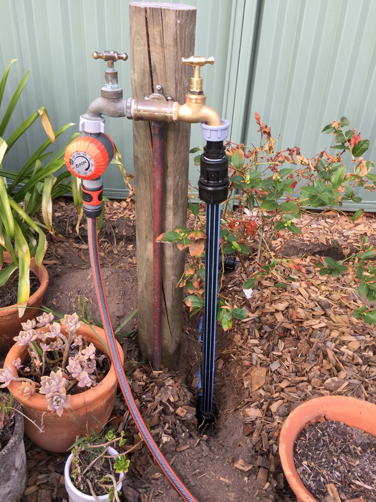 Second garden tap installed, connected to 25mm blue-line poly-pipe.